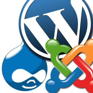 Content Management Systems, wordpress