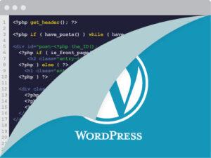 Open source coding on wordpress