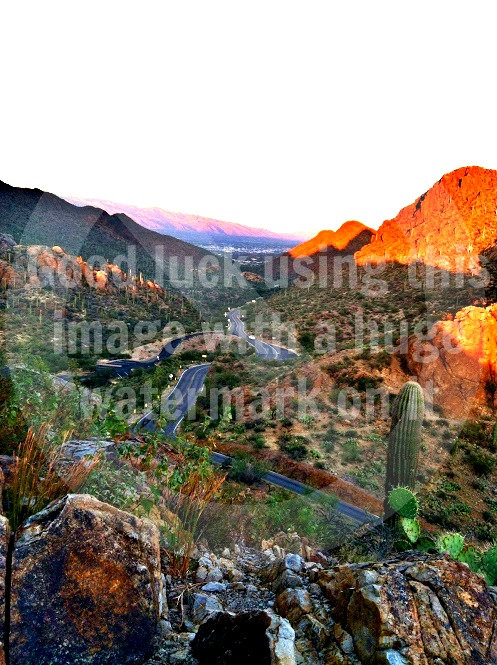 example of protected image due to watermark